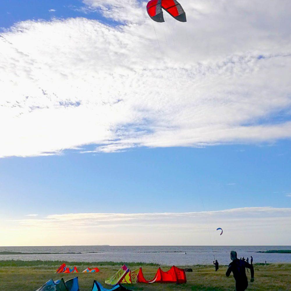 Kites_3_lille
